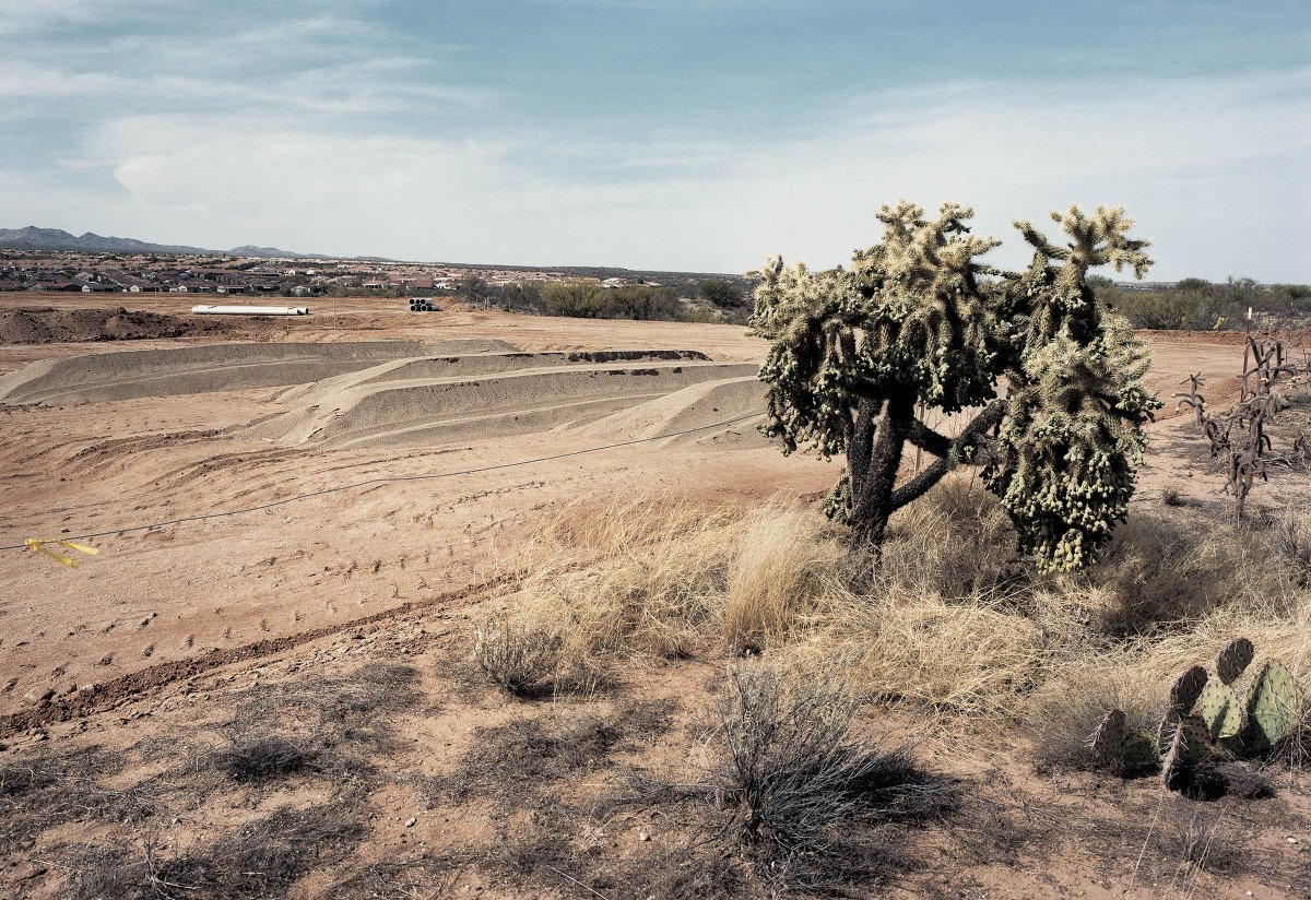 Housing Development in Cholla Forest, Sonora Desert, Arizona 1999