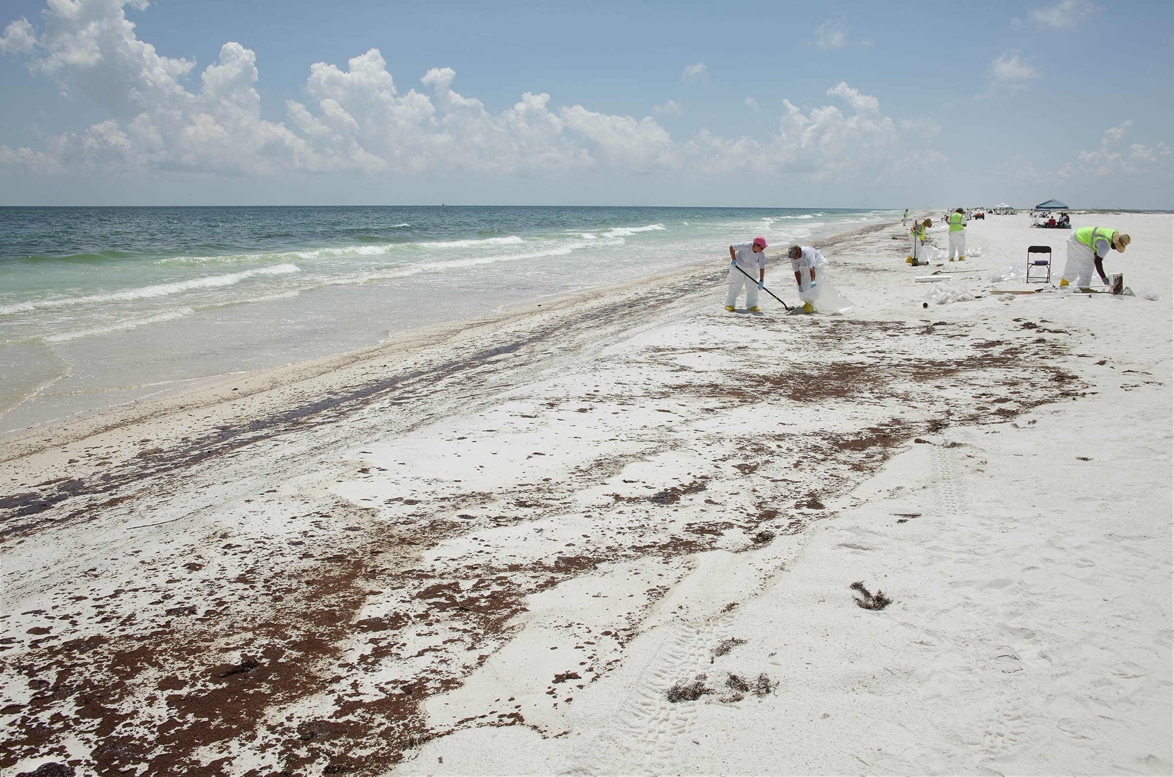 Clean-up Workers, National Sea Shore Park, Santa Rosa Island, Florida 2010