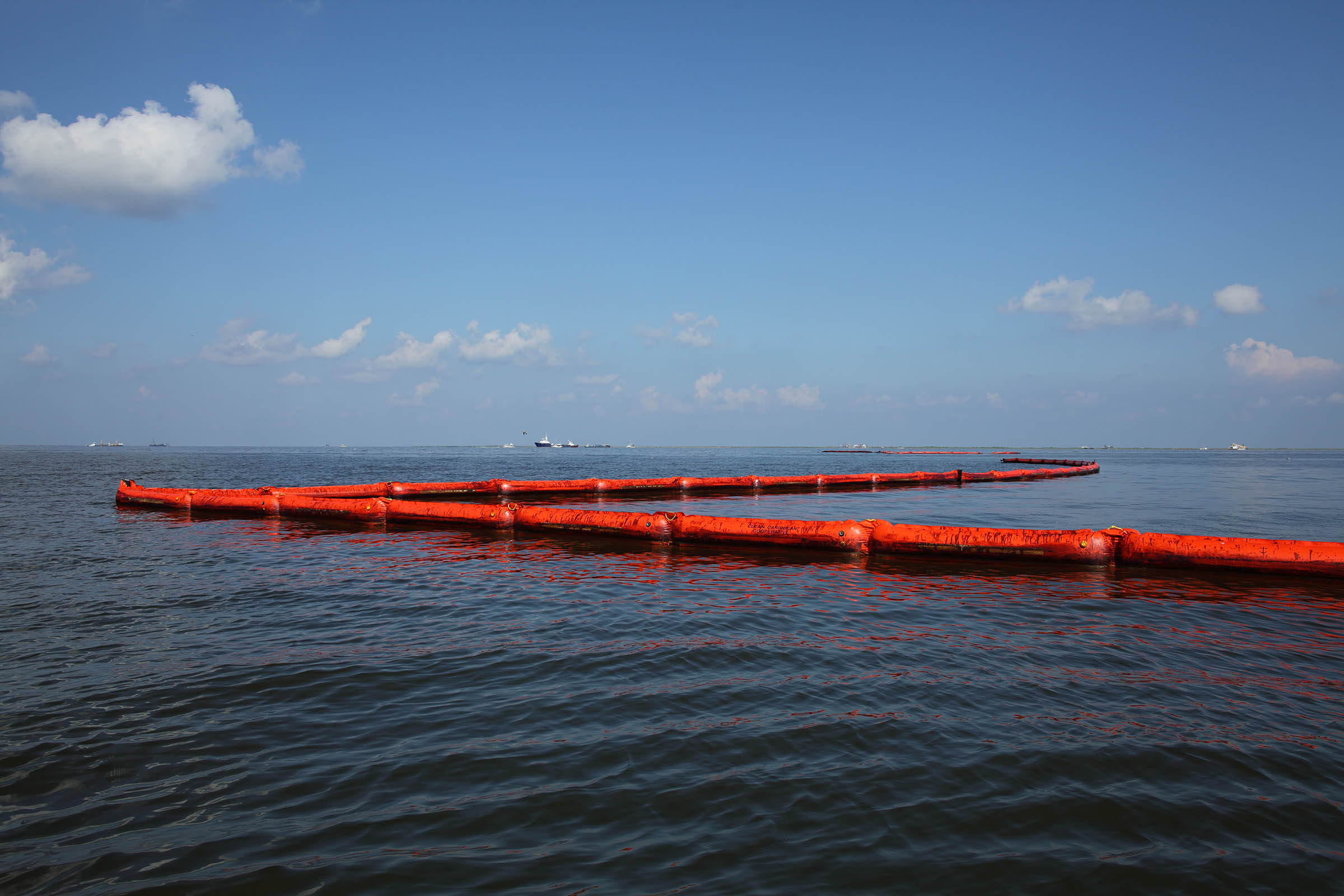 Oiled Booms, Barataria Bay near Queen Bess Island, Grand Isle, Louisiana 2010