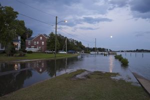 Flooding at High Tide and Full Moon Cambridge PL Norfolk VA.  (El.2 ft) 2011