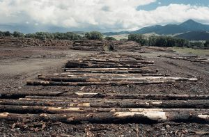 Lumber Mill, Livingston, Montana 1999